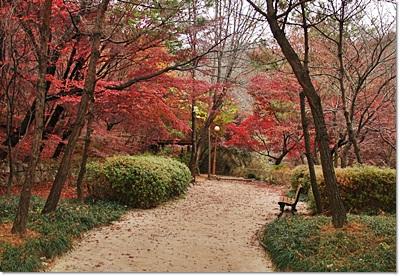 삼청공원 가을2.jpg