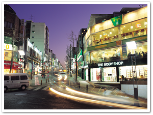 27100042005120026_Sinchon-Ehwa Univ. Street, New Look of Seoul.png