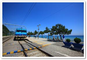 3212033201006023k_Coast Scenic Railway .png